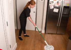 Domestic Cleaning with Mop